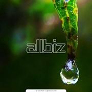 Система капельного полива фото