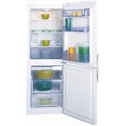 Холодильник BEKO CSK25000 фото
