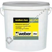Краска фасадная Weber.ton akrylat NFAKR SU 100 25 колеровка (В007) фото