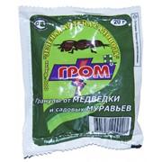 Инсектицидный препарат Гром 20гр фото