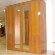 Шкаф «Нарния 1»2300х2004х600 фото