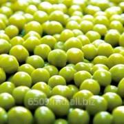 Зеленый горошек замороженный фото