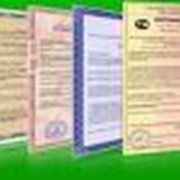Сертификация продукции. фото