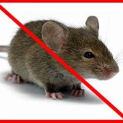 Родентицид Крысиная смерть №1 100 шт г фото