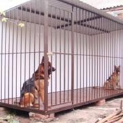 Вольеры уличные для содержания собак фото