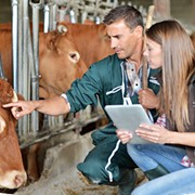 Тренинги по эффективному животноводству фото