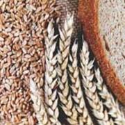 Сушка при влажности зерна до 19% включительно за каждый тонно-процент снятия влажности (овёс, рожь, ячмень) фото