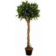 Искусственное дерево Фикус Биш (Код товара: 47549) фото