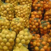 Сетка овощная фото