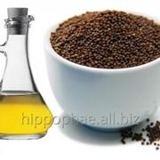 Масло черного тмина (black cumin oil) фото