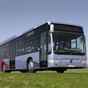 Городские, пригородные и междугородние пассажирские перевозки комфортабельными автобусами