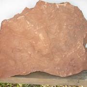 Песчаник рельефный - дракон красный фото