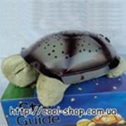 Черепашка ночник фото