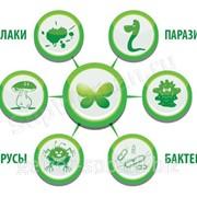Очистка воды от бактерий, вирусов, паразитов фото