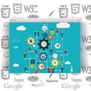 Обслуживание WEB-сайтов, контент, программирование фото