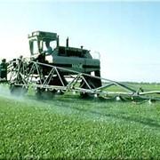 Пестициды, гербициды фото