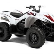 Квадроцикл Yamaha Wolverine 450 фото