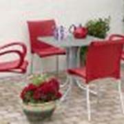 Мебель для кафе DAMA CENTA SCUDO фото