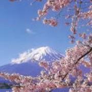 Отдых в Японии фото