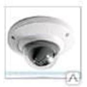 Купольная видеокамера IPC-HDB4200CP Dahua Technology фото
