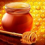 Honey фото