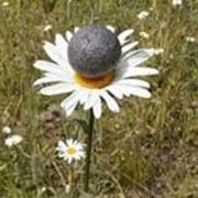Пеностекло гранулированное фото