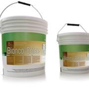 Порошковая краска на основе извести BIANCO DI CALCE фото