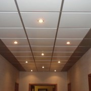 Потолок кассетный подвесной Albes фото
