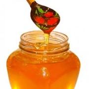 Мед разнотравье от производителя Укарина, экспорт фото