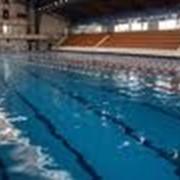 Бассейн в Областной спортивной школе плавания фото
