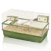 Клетка для грызунов Imac Plexi 100 Wood, зеленая фото