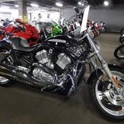 Мотоцикл чоппер No. B5481 Harley Davidson VRSCB V-ROD фото