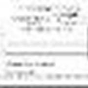 Квитанции расчетные с голограммой фото