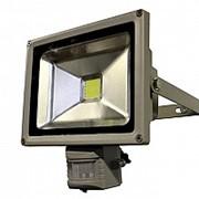 Прожектор светодиодный СДО-2Д-20 с датчиком движения фото