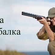 Рыбалка и охота фото