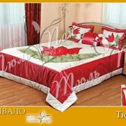 Покрывало с подушками Тюльпан 08101С фото
