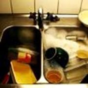 Пожиратель нечистот - для жиров фото