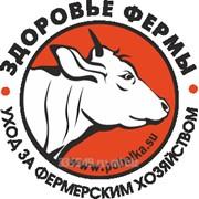 Побелка и ремонт промышленных и сельскохозяйственных обьектов по России фото
