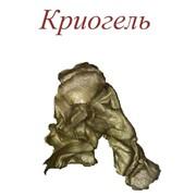Смазка Криогель фото