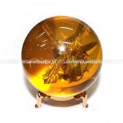 Сувенир Шар Янтарь со Стрекозой 210073 фото