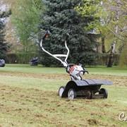 Скарификация (вычесывание газона), услуги садовника фото