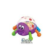 Развивающая игрушка Жучок-попрыгунчик фото