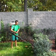 Обработка сада от болезней и вредителей. фото
