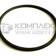 Уплотнительное кольцо крышки обратного клапана моноблока Adast P640.50 фото