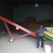 Услуги хранения овощей и фруктов в Астане фото