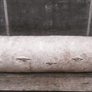 Готовые грибные блоки вешенки, сельскохозяйственная продукция фото