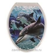 Сиденье для унитаза декор Дельфины, Код: КУДК-813Д фото
