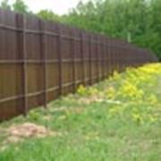 Забор из профильного листа фото