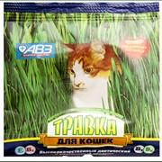 Травка для кошек фото