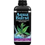 AquaBurst 1л фото